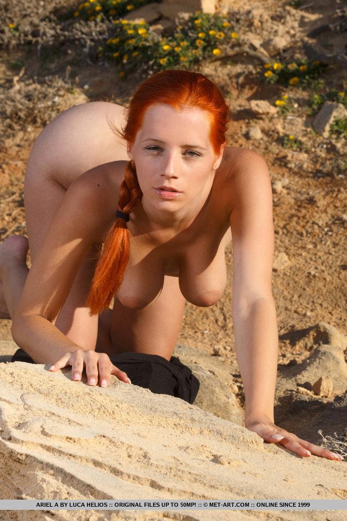 Desert tits