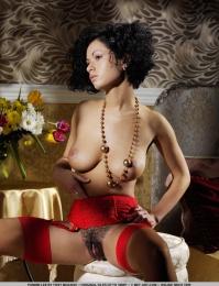 ebony girl with a bushy pussy
