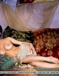 Pretty porn star with big fake tits